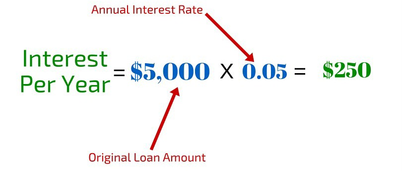 Interest on Student Loan Per Year