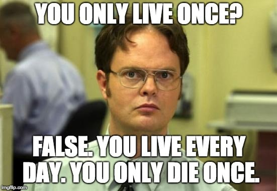 You Only Live Once (YOLO) Meme